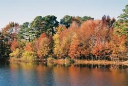 Fall, lake
