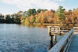 Fall, dock