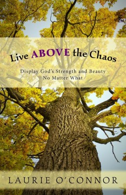 Live Above the Chaos