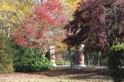 Fall Pic Laurel Grove 3