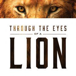 Oaks Through the Eyes of a Lion